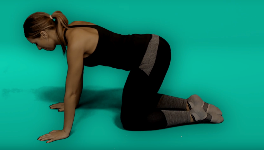 Back pain exercises - cat (spinal stretch)