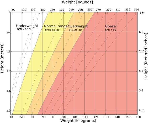 Standard adult BMI chart