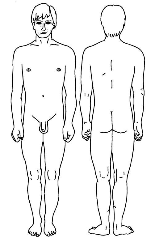 Human body diagram front and back human body diagram front and back photo2 ccuart Gallery