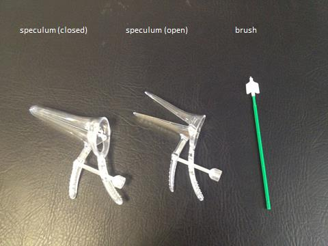 vaginal speculum and cervical brush